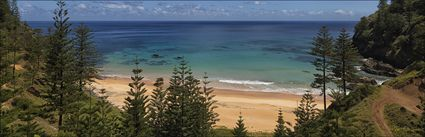 Anson Bay - Norfolk Island - NSW H (PBH4 00 12130)