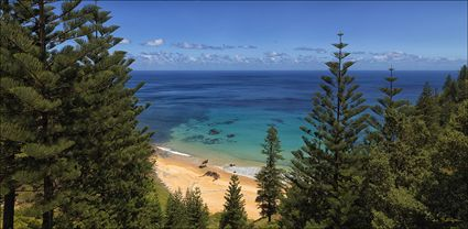 Anson Bay - Norfolk Island - NSW T (PBH4 00 12112)