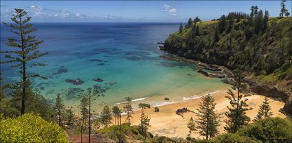 Anson Bay - Norfolk Island - NSW T (PBH4 00 12124)