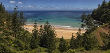 Anson Bay - Norfolk Island - NSW T (PBH4 00 12130)
