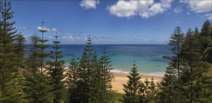 Anson Bay - Norfolk Island - NSW T (PBH4 00 12133)