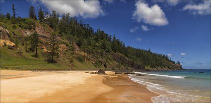 Anson Bay - Norfolk Island - NSW T (PBH4 00 12141)