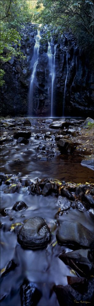 Atherton Waterfall Vertical - QLD (PB00 2345)