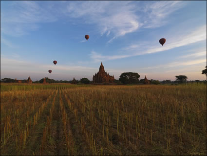 Balloons over Bagan SQ (PBH3 00 15054)