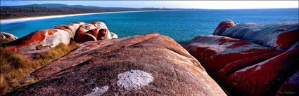 Bay of Fires 15  - TAS (PB00 4373)