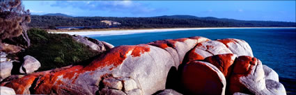 Bay of Fires 6 - TAS (PB00 4384)