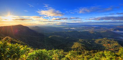 Best of All Lookout - Springbrook National Park - QLD T (PB5D 00 3930)