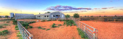 Bucklow Station - Woolshed - NSW (PB5D 00 2664)
