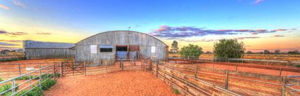 Bucklow Station - Woolshed - NSW (PB5D 00 2667)