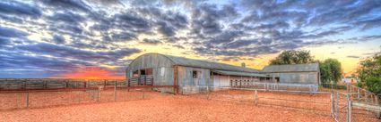 Bucklow Station - Woolshed - NSW (PB5D 00 2697)