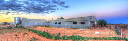 Bucklow Station - Woolshed - NSW (PB5D 00 2703)