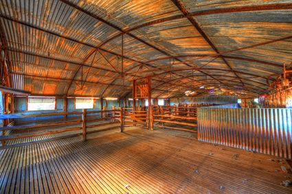 Bucklow Station - Woolshed - NSW SQ (PB5D 00 2643)