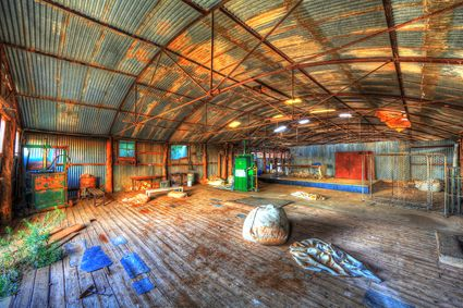 Bucklow Station - Woolshed - NSW SQ (PB5D 00 2658)