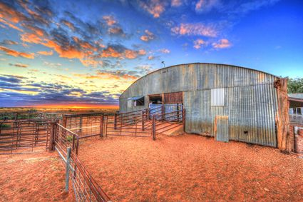 Bucklow Station - Woolshed - NSW SQ (PB5D 00 2673)