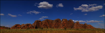 Bungle Bungles - WA SQ (PBH3 00 11790)