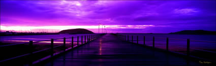 Coffs Harbour Jetty Purple - NSW (PB 003057)