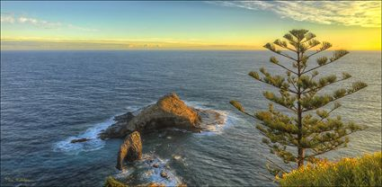 Elephant Rock - Norfolk Island - NSW T (PBH4 00 12337)