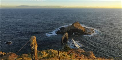 Elephant Rock - Norfolk Island - NSW T (PBH4 00 12340)