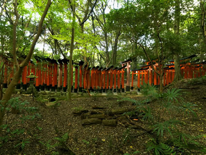 Fuishi Inari - Japan SQ (PBH3 00 0098)