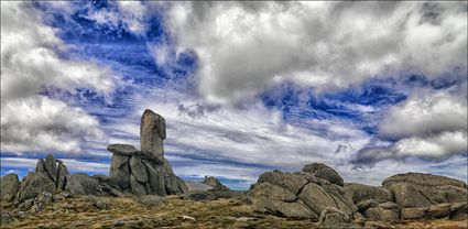 Granite Tor - Rams Head Range - NSW T (PBH4 00 10736)