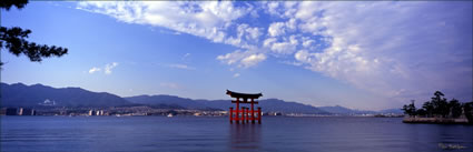 Floating Torii - Japan (PB00 6104)