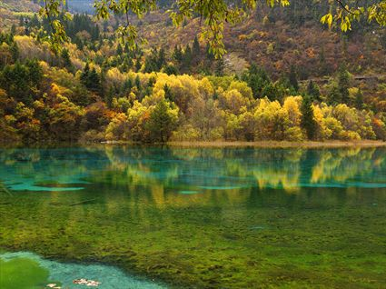 Jiuzhaigou National Park - China SQ (PBH4 00 15423)