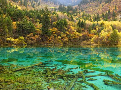 Jiuzhaigou National Park - China SQ (PBH4 00 15428)