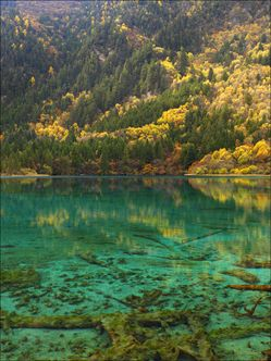 Jiuzhaigou National Park - China SQ V (PBH4 00 15437)