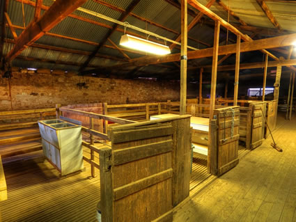 Shearing Shed - SA SQ (PBH3 00 18733)