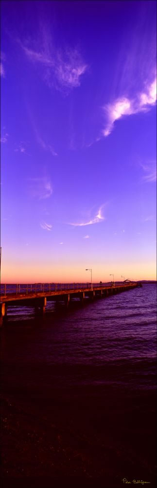 Woody Point Jetty Vertical 2 - QLD (PB 003208)