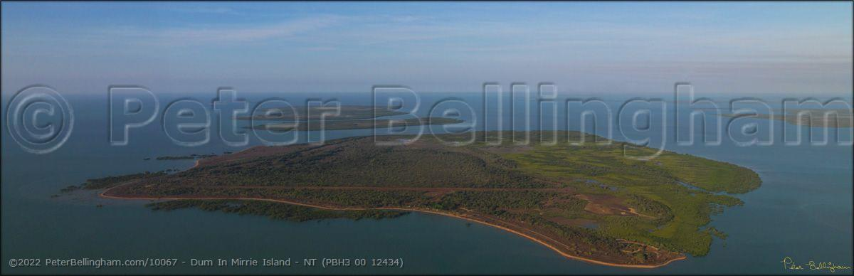 Peter Bellingham Photography Dum In Mirrie Island - NT (PBH3 00 12434)