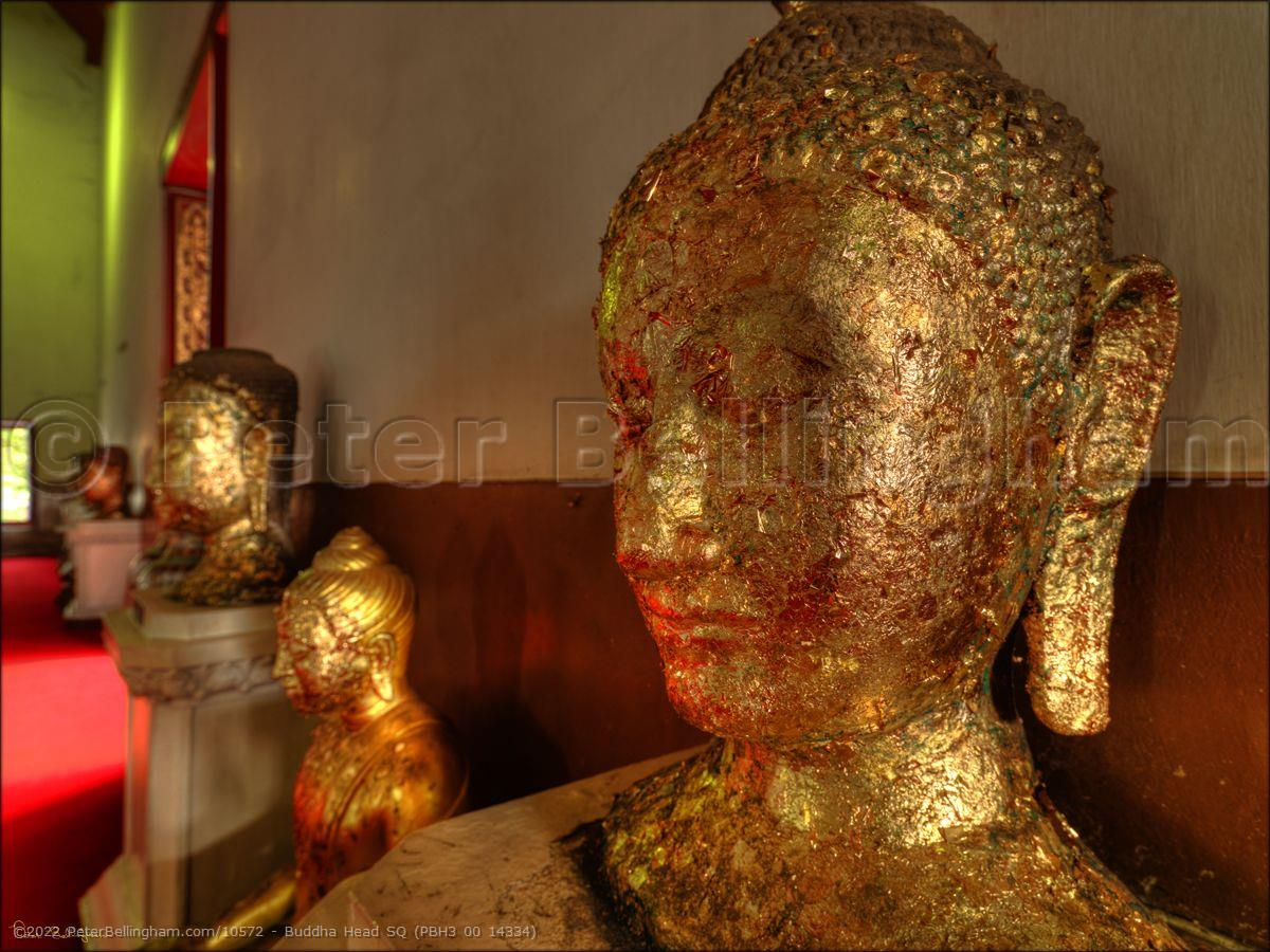 Peter Bellingham Photography Buddha Head SQ (PBH3 00 14334)