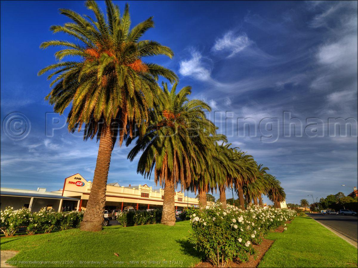 Peter Bellingham Photography Broardway St - Junee - NSW SQ (PBH3 00 17111)
