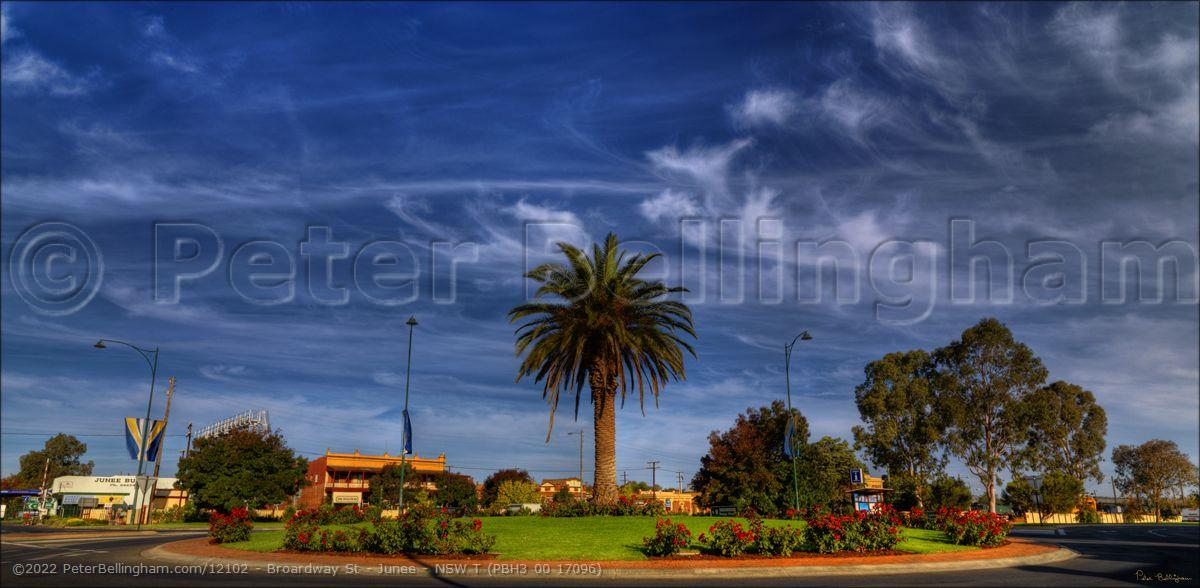 Peter Bellingham Photography Broardway St - Junee - NSW T (PBH3 00 17096)