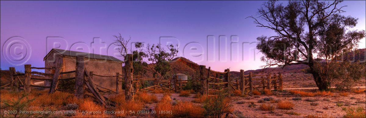 Peter Bellingham Photography Arkaroola Stockyard - SA (PBH3 00 18536)