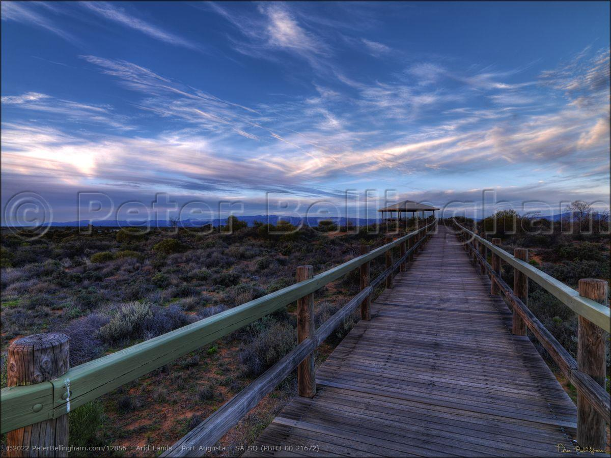 Peter Bellingham Photography Arid Lands - Port Augusta - SA SQ (PBH3 00 21672)