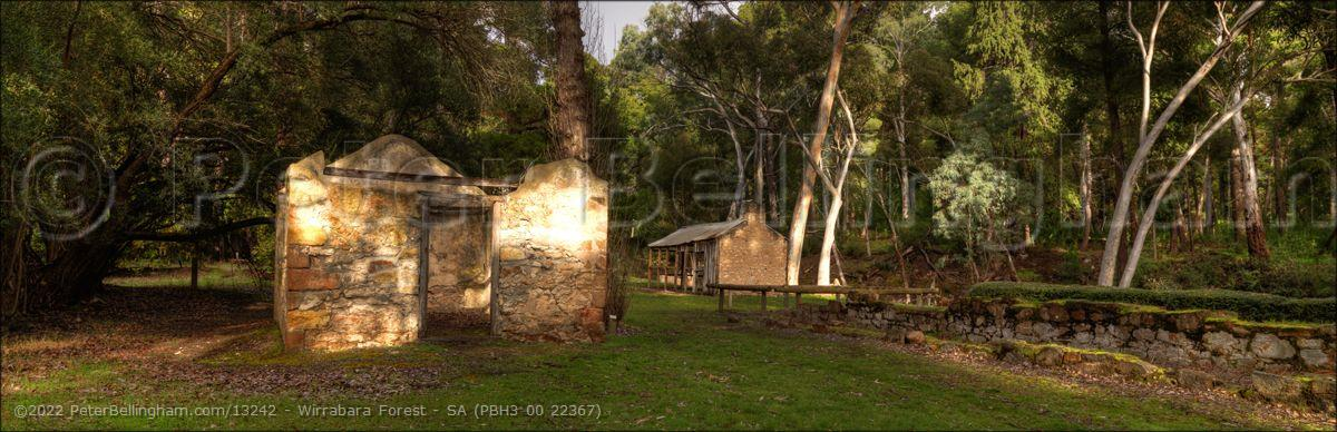 Peter Bellingham Photography Wirrabara Forest - SA (PBH3 00 22367)