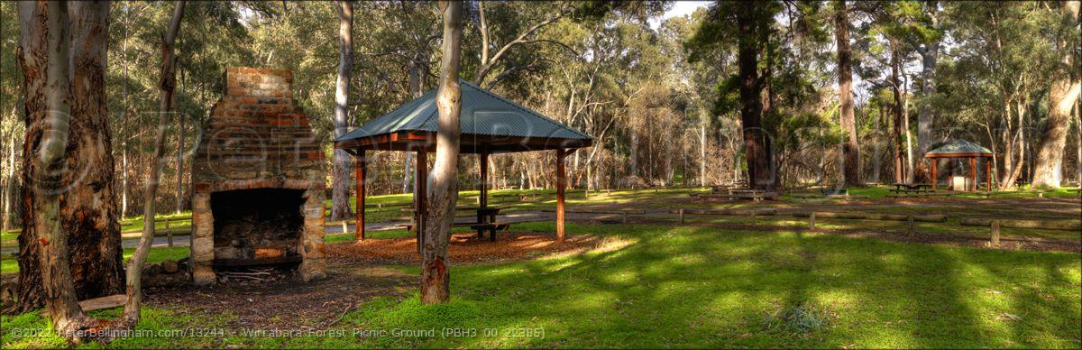 Peter Bellingham Photography Wirrabara Forest Picnic Ground (PBH3 00 22385)