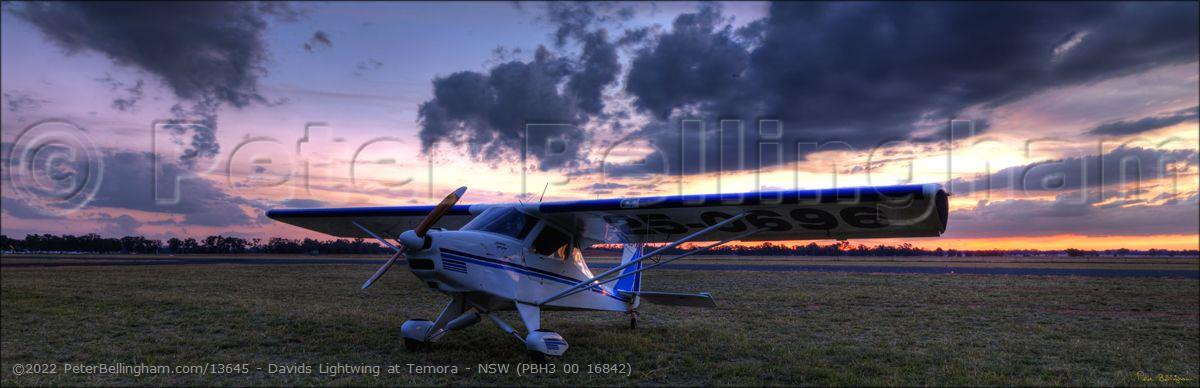 Peter Bellingham Photography Davids Lightwing at Temora - NSW (PBH3 00 16842)