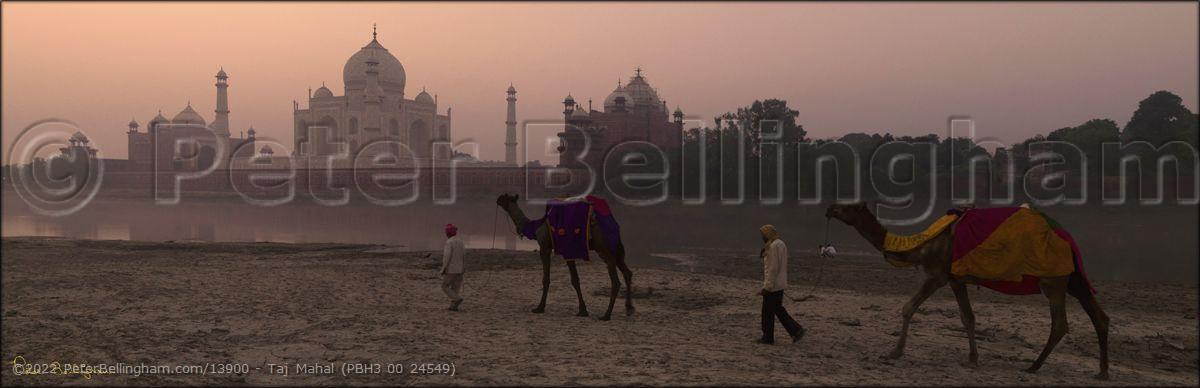 Peter Bellingham Photography Taj Mahal (PBH3 00 24549)