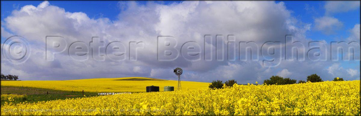 Peter Bellingham Photography Windmill - Burra - SA H (PBH3 00 30610)