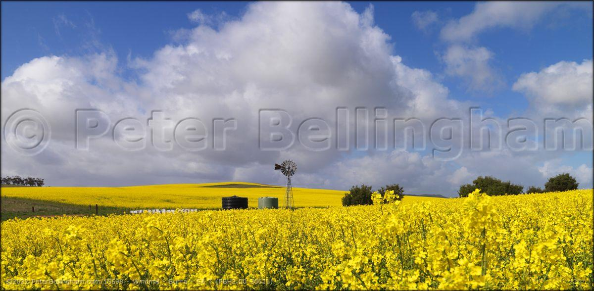 Peter Bellingham Photography Windmill - Burra - SA T (PBH3 00 30611)