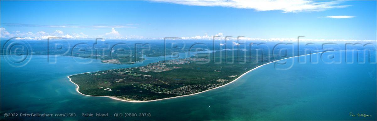Peter Bellingham Photography Bribie Island - QLD (PB00 2874)