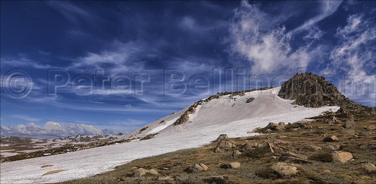 Peter Bellingham Photography Etheridge Ridge - Kosciuszko NP - NSW T (PBH4 00 10548)