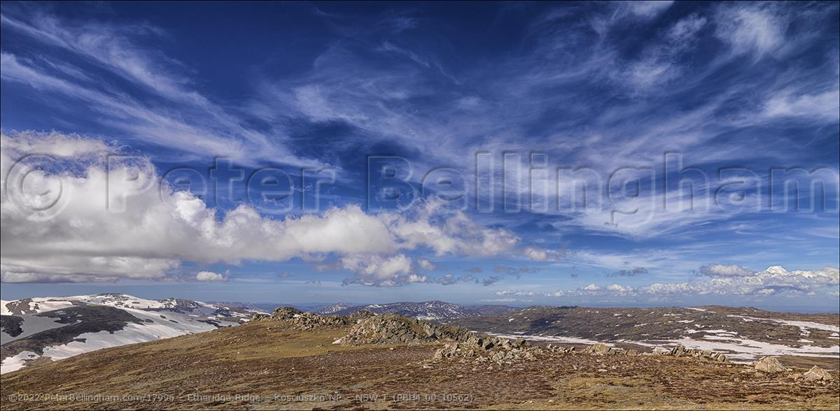 Peter Bellingham Photography Etheridge Ridge - Kosciuszko NP - NSW T (PBH4 00 10562)