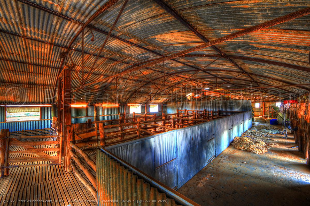 Peter Bellingham Photography Bucklow Station - Woolshed - NSW SQ (PB5D 00 2649)