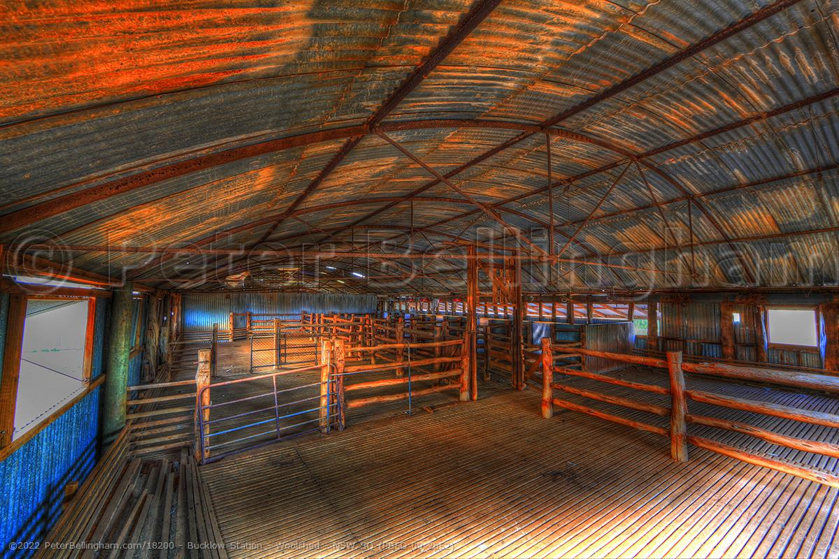Peter Bellingham Photography Bucklow Station - Woolshed - NSW SQ (PB5D 00 2652)