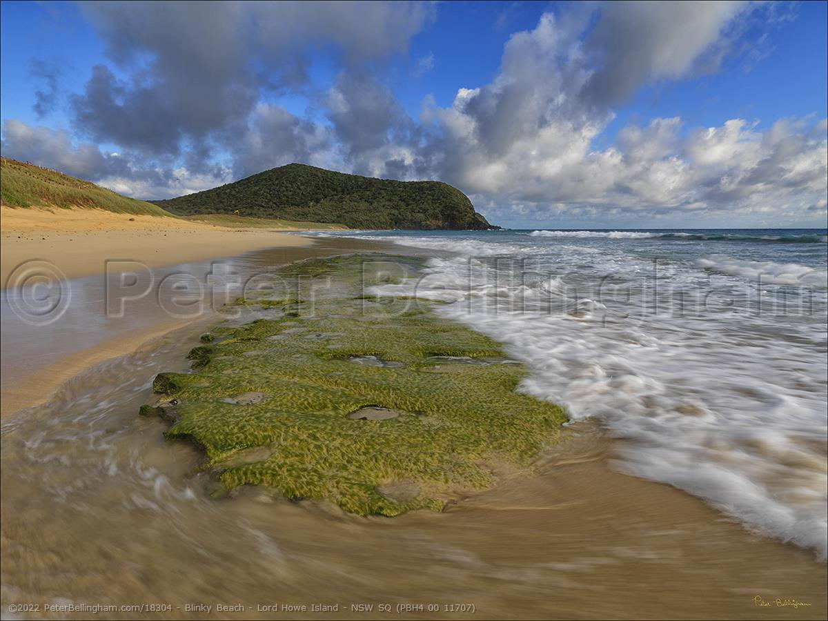 Peter Bellingham Photography Blinky Beach - Lord Howe Island - NSW SQ (PBH4 00 11707)