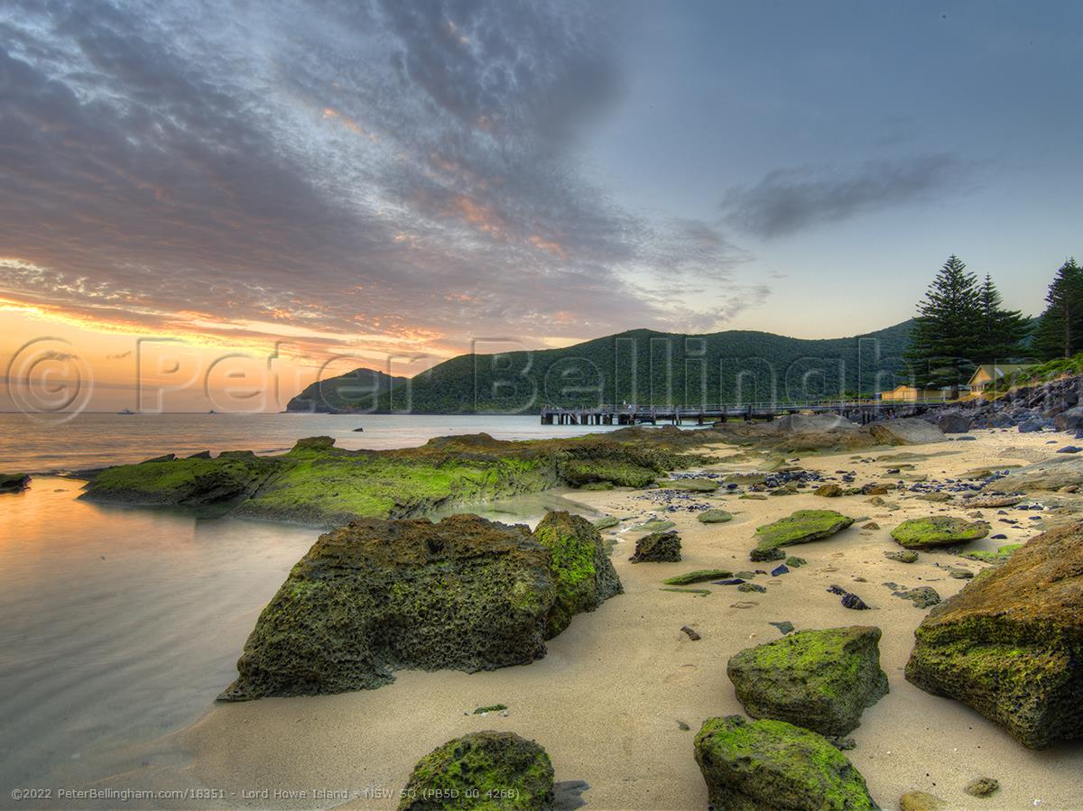 Peter Bellingham Photography Lord Howe Island - NSW SQ (PB5D 00 4268)