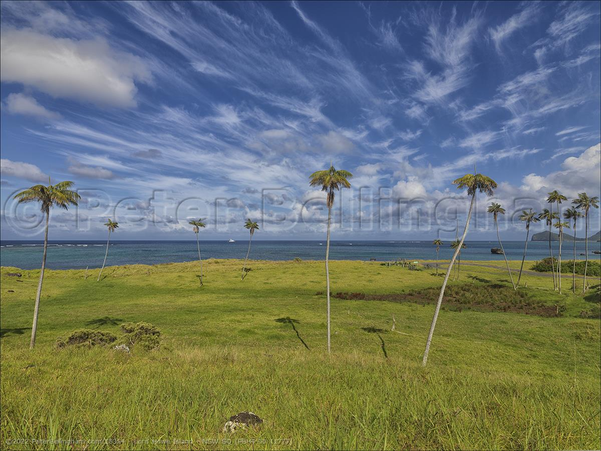 Peter Bellingham Photography Lord Howe Island - NSW SQ (PBH4 00 11777)